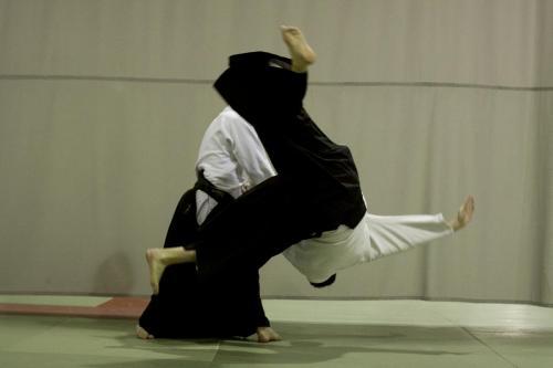 aikido szeltner 028 másolata
