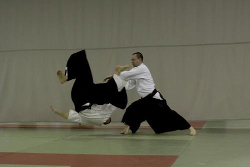 aikido szeltner 100 másolata