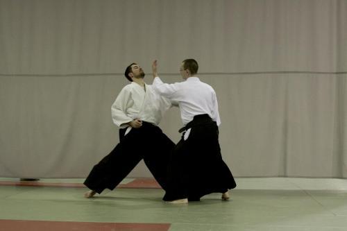 aikido szeltner 124 másolata