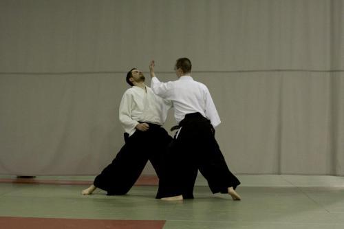 aikido szeltner 125 másolata