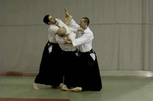 aikido szeltner 171