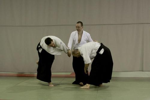 aikido szeltner 174