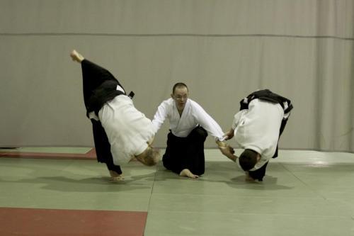 aikido szeltner 184