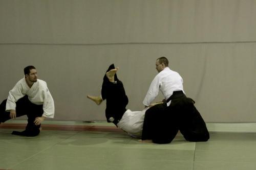 aikido szeltner 201