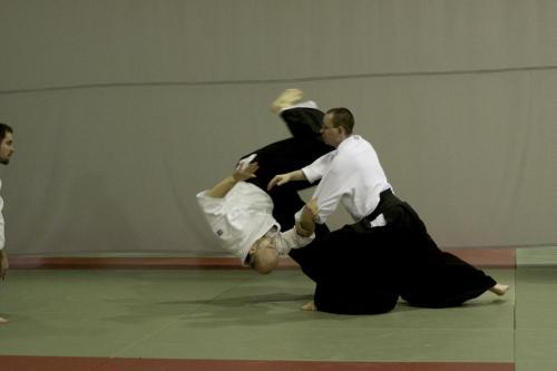 aikido szeltner 207