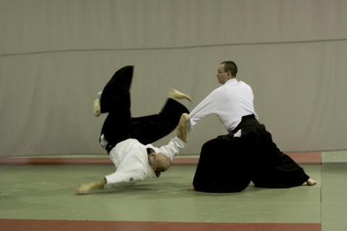 aikido szeltner 208