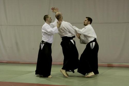 aikido szeltner 217