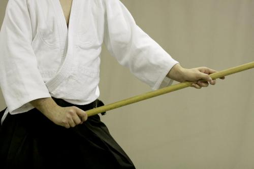 aikido szeltner 309