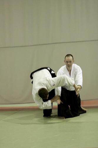 aikido szeltner 331