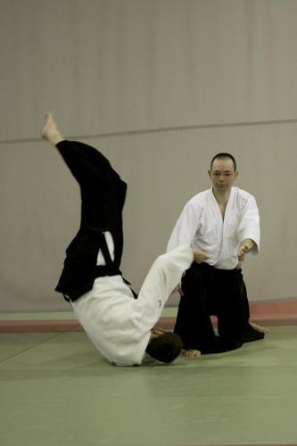 aikido szeltner 333